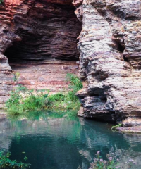 Cueva de Los Leones