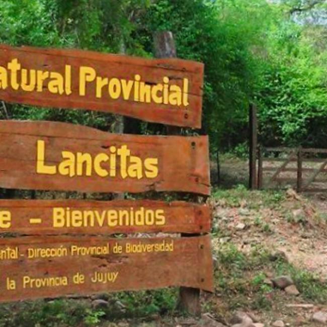 Reserva Natural Provincial «Las Lancitas»