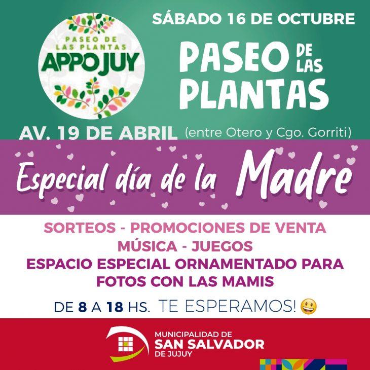 «Paseo de las Plantas» especial Dia de las Madres